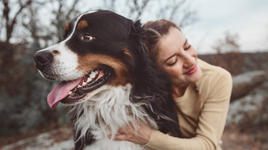 Are you repulsed by your pet's bad breath?